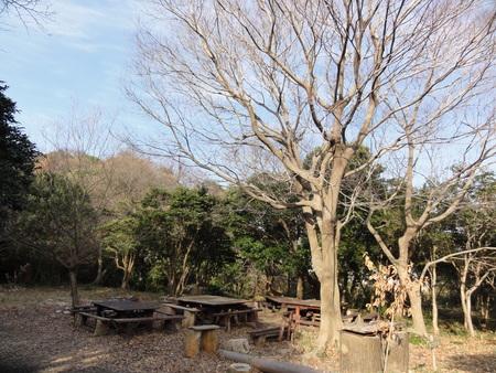 新山階段作り継続計画  in  運営委員会_c0108460_17323742.jpg