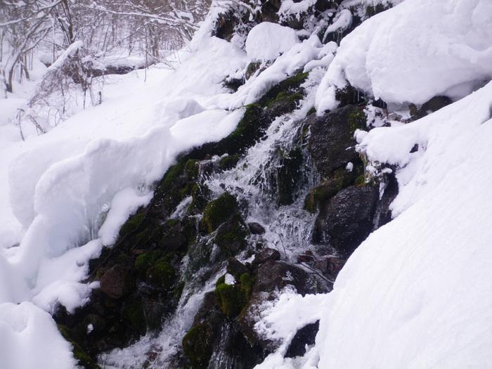 北蔵王 茶畑尾根から水無沢滑降 ~ 2013年2月9日_f0170180_22585022.jpg