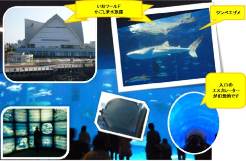 かごしま水族館と桜島♪_b0228113_17153456.png