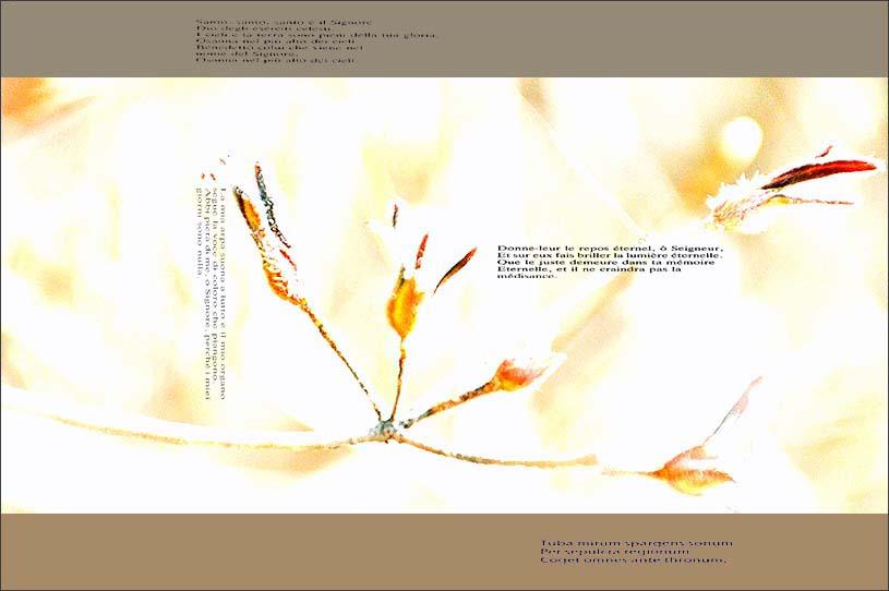 f0198771_01099.jpg