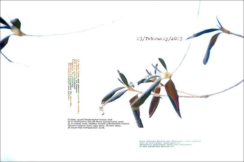 f0198771_011510.jpg