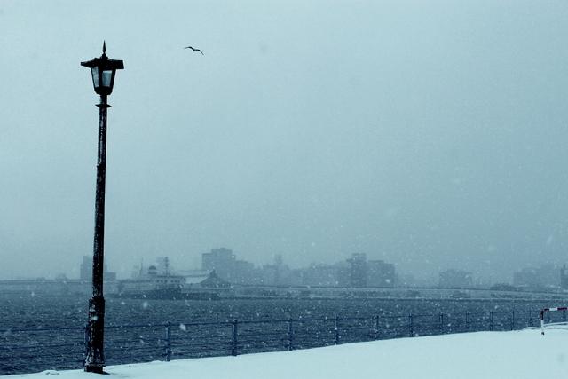 冬の写真、幻想的(かな?)_a0158797_0212255.jpg