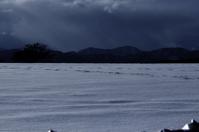 冬の写真、幻想的(かな?)_a0158797_045592.jpg