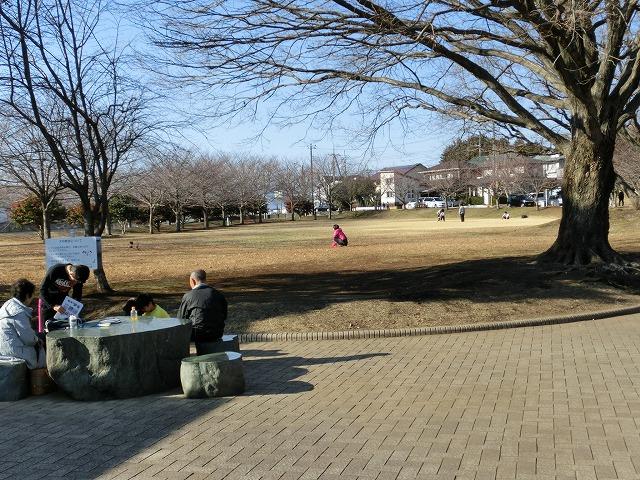 祝日の広見公園と、初めて訪れた「稲垣邸」_f0141310_7153084.jpg