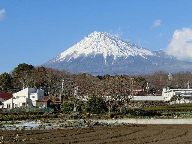 祝日の広見公園と、初めて訪れた「稲垣邸」_f0141310_715942.jpg