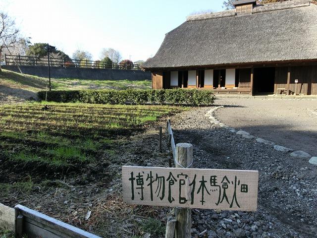 祝日の広見公園と、初めて訪れた「稲垣邸」_f0141310_7174189.jpg