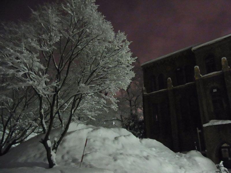 午後の大雪_c0025115_22172416.jpg
