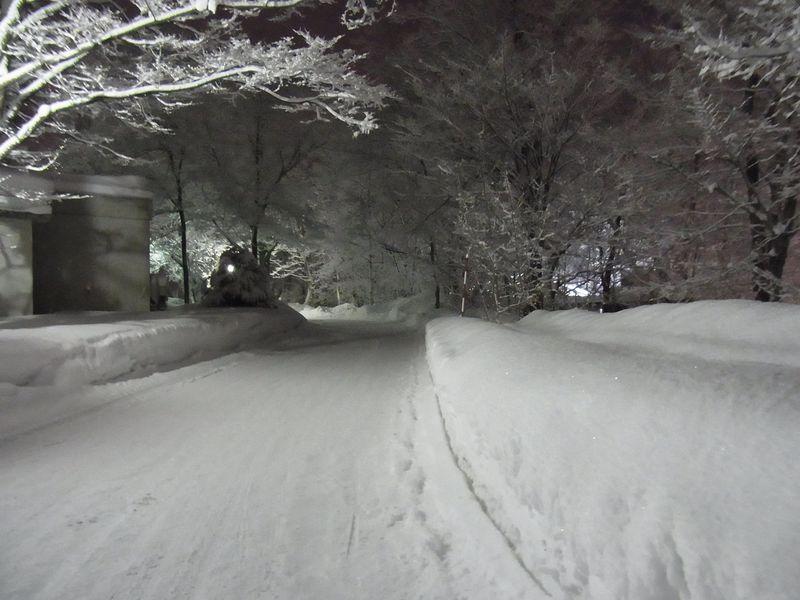 午後の大雪_c0025115_22224383.jpg