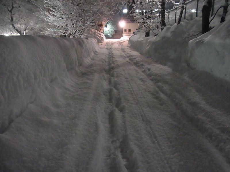 午後の大雪_c0025115_222681.jpg