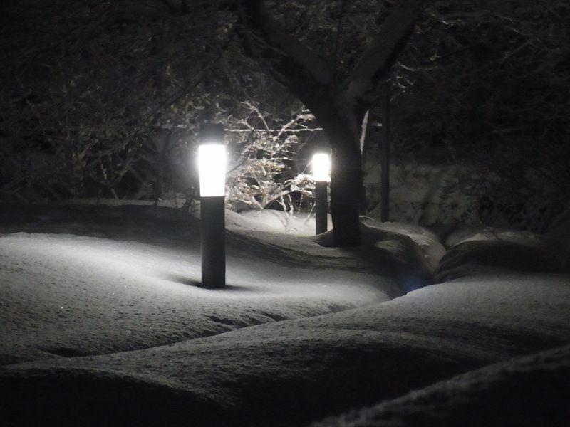 午後の大雪_c0025115_22281690.jpg