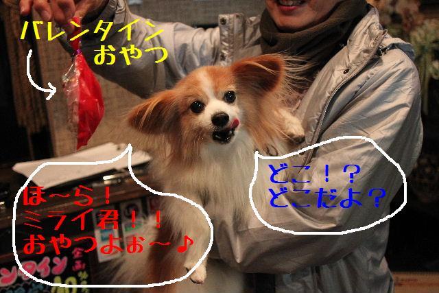 b0130018_1846190.jpg