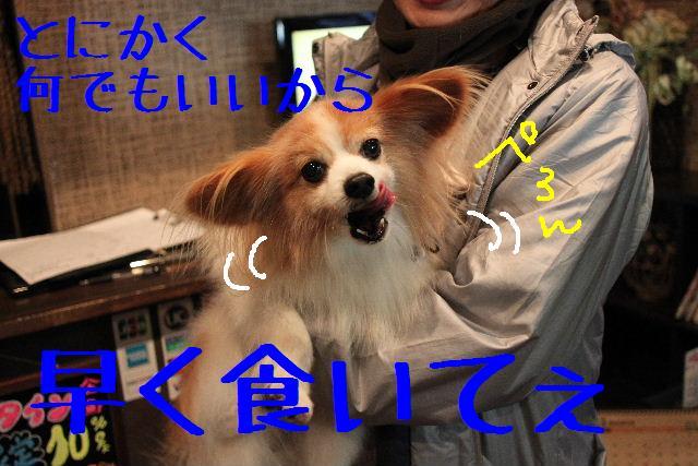 b0130018_1846648.jpg