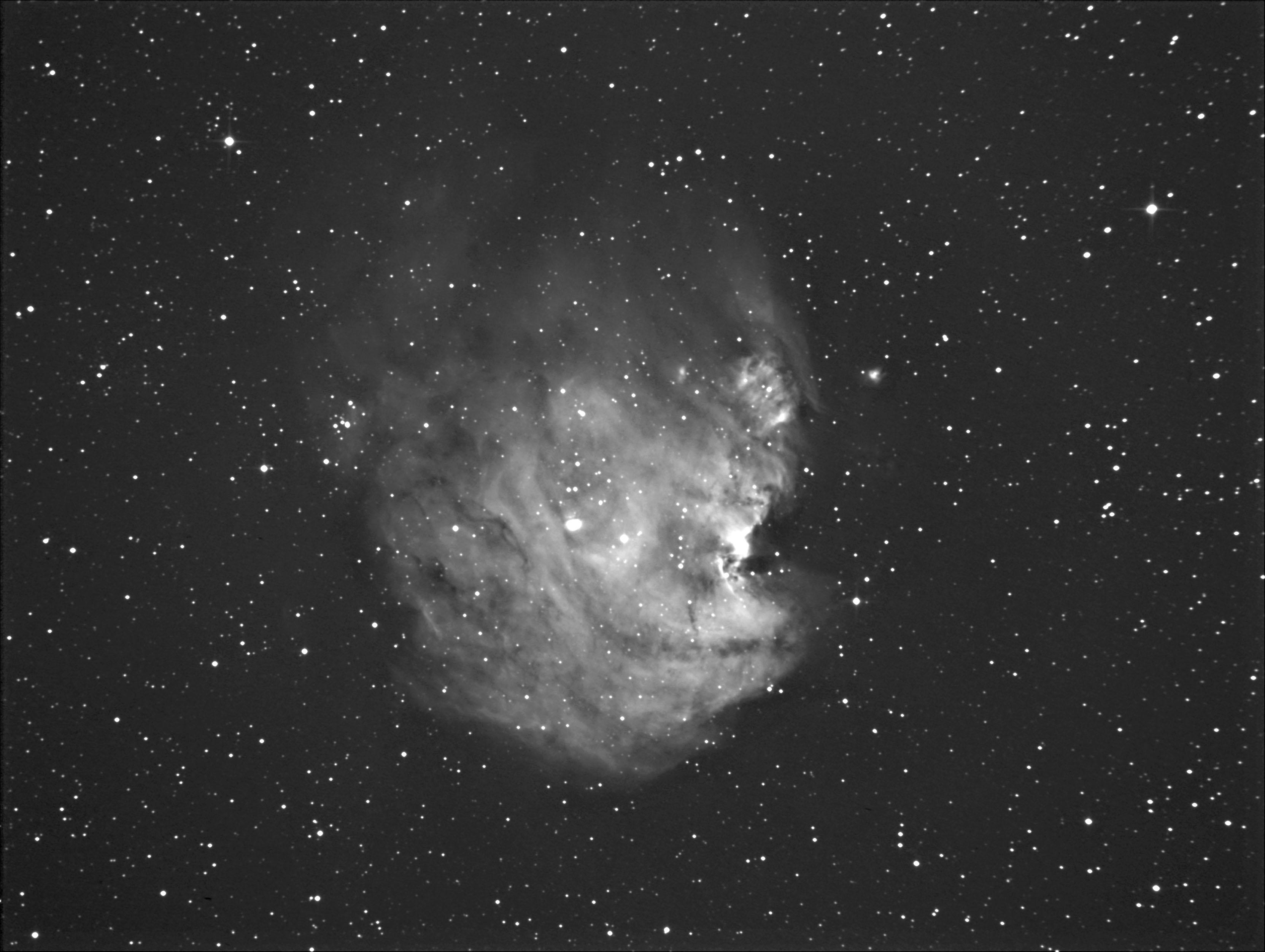 モンキー星雲 NGC 2174 _c0061727_2201949.jpg
