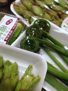 春野菜_c0210829_18425222.jpg