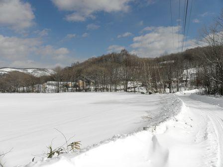 雪遊び大好き!龍泉洞黒豚_b0206037_18533373.jpg
