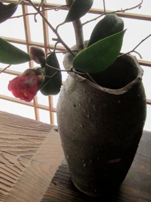 花を摘む_a0255443_21565744.jpg