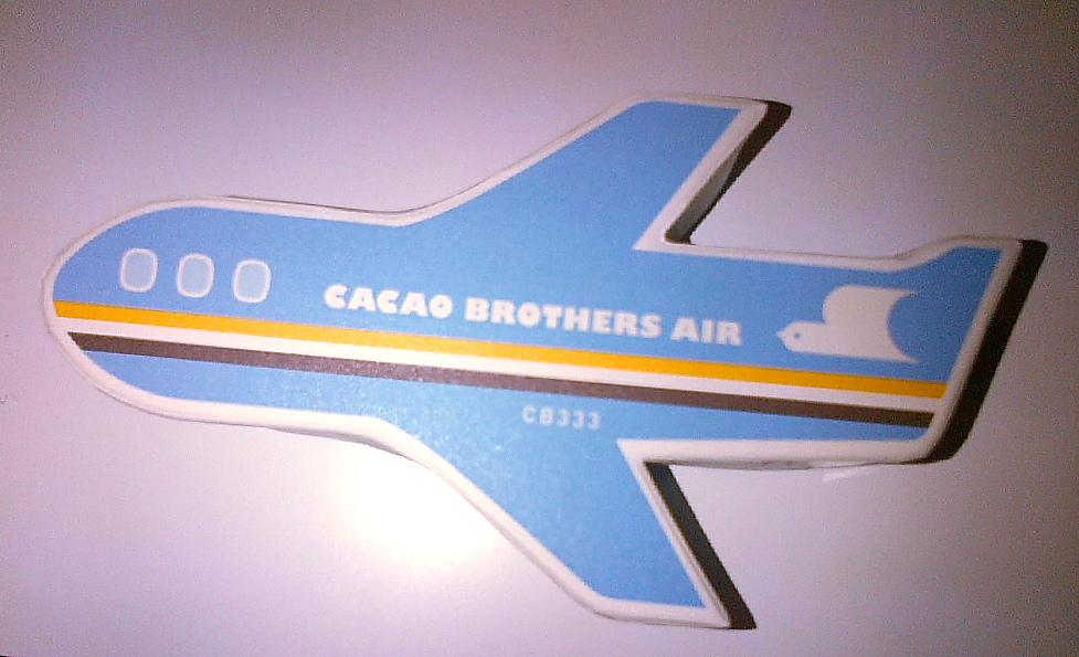 飛行機チョコ、、。_f0137044_1602924.jpg