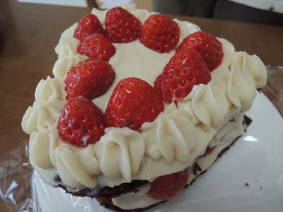 バレンタインに苺とココアのケーキを作りました_b0252363_16474960.jpg