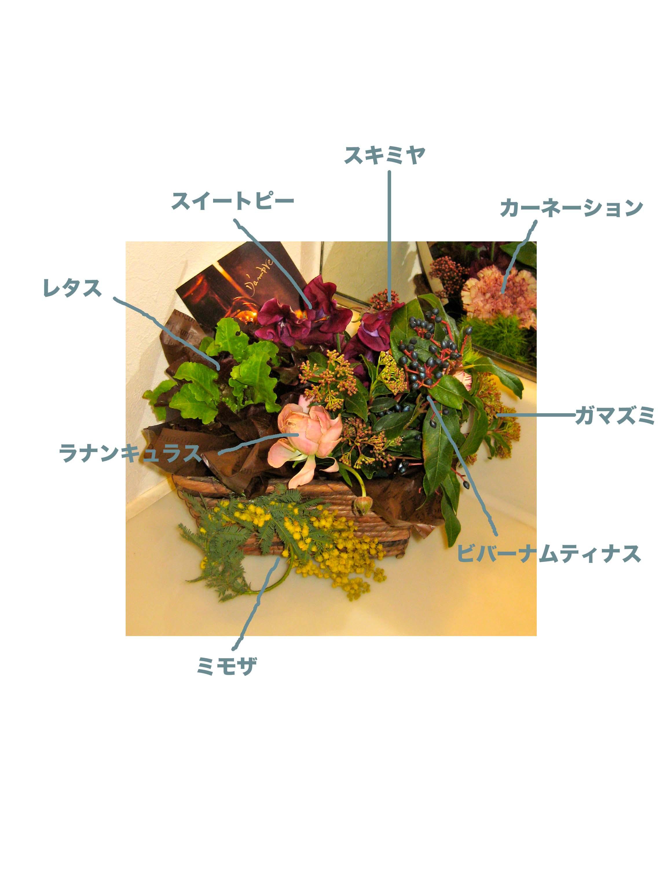 d0256969_20211381.jpg