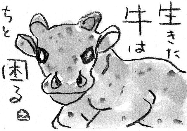 本物の牛が当たります_a0220570_22451859.jpg