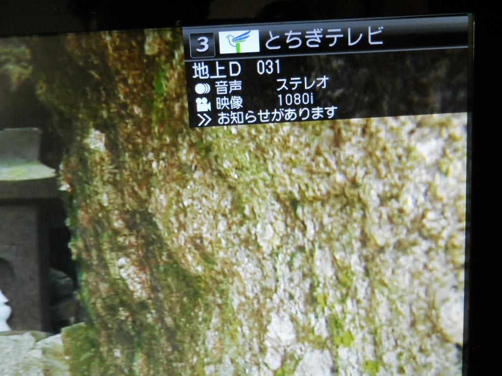 a0120283_21143110.jpg