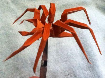 簡単 折り紙 折り紙 蜘蛛 : charlie24k.exblog.jp