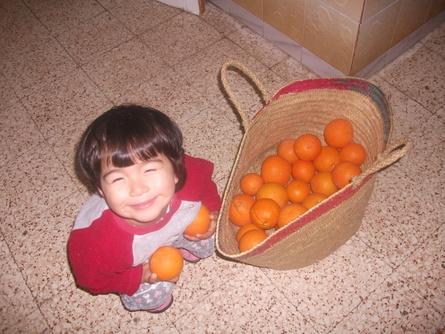 オレンジ♪_f0253303_1181674.jpg