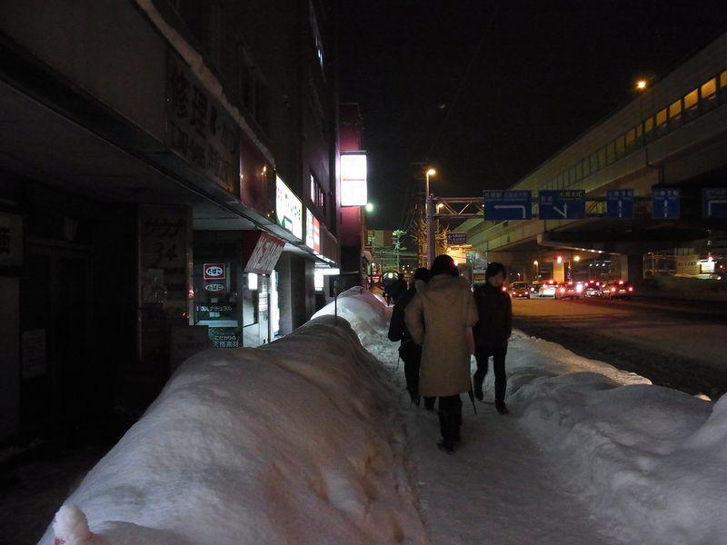午後の大雪2_c0025115_19303098.jpg