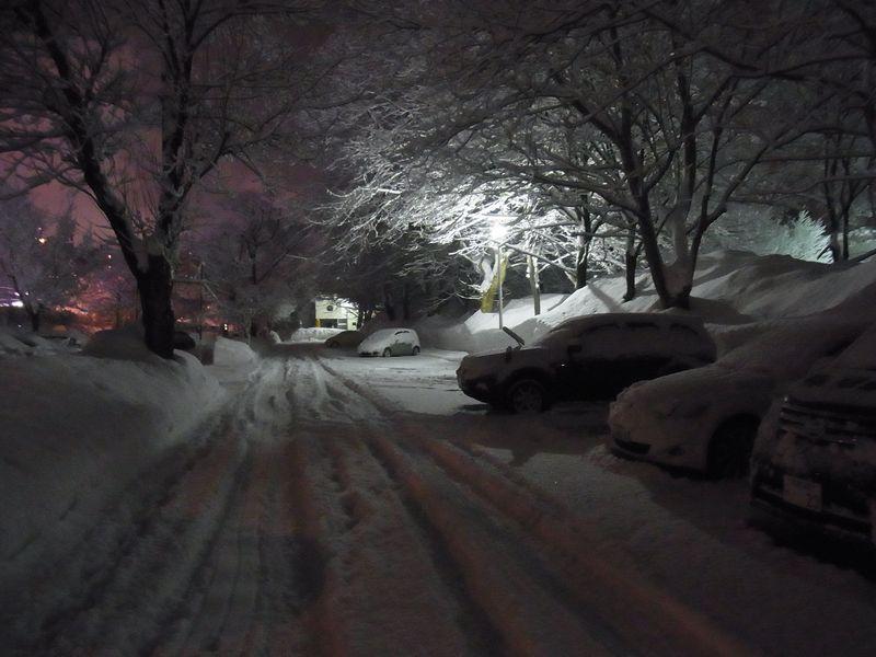 午後の大雪2_c0025115_19303614.jpg