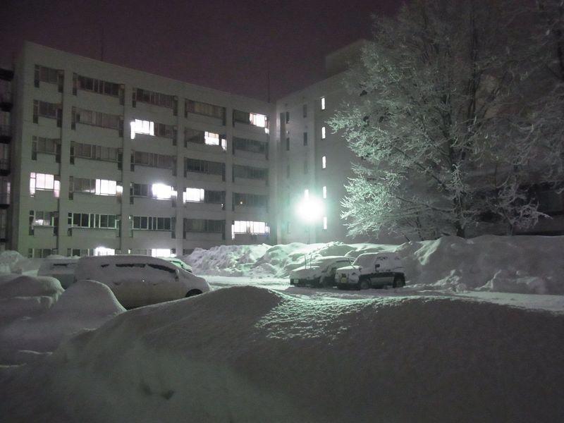 午後の大雪2_c0025115_19304814.jpg