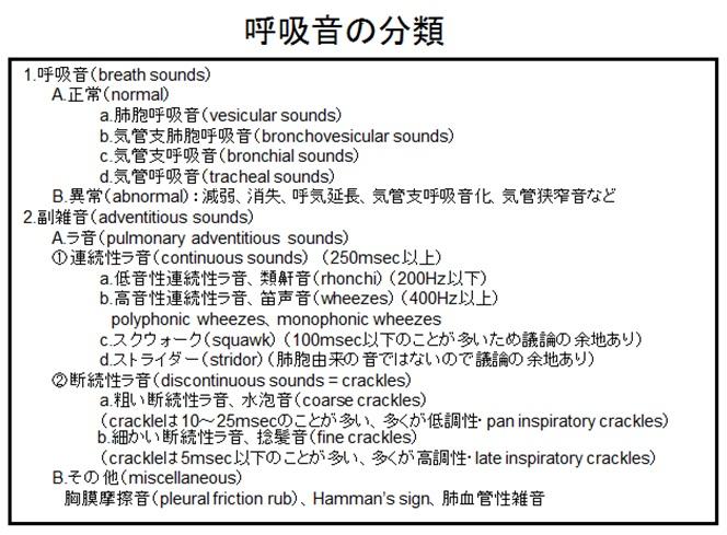 聴診とラ音_e0156318_1113413.jpg