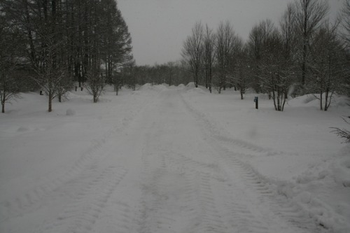 2月15日 道路・フィールド状況_b0174425_15134778.jpg
