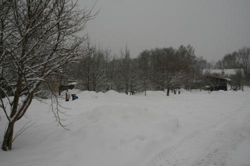 2月15日 道路・フィールド状況_b0174425_15141026.jpg