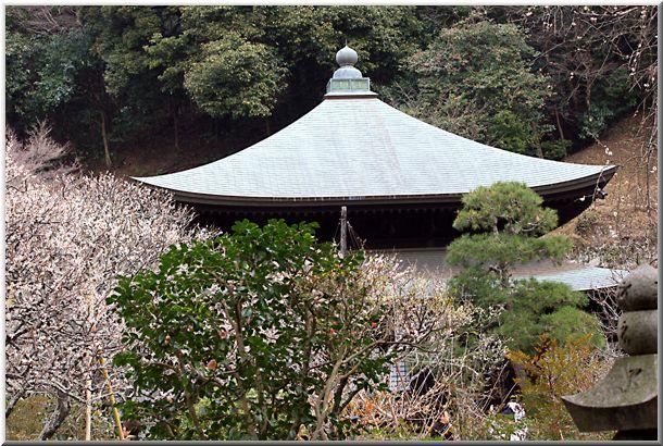 瑞泉寺(鎌倉市)_d0123528_18152871.jpg