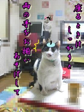 b0151748_11294518.jpg