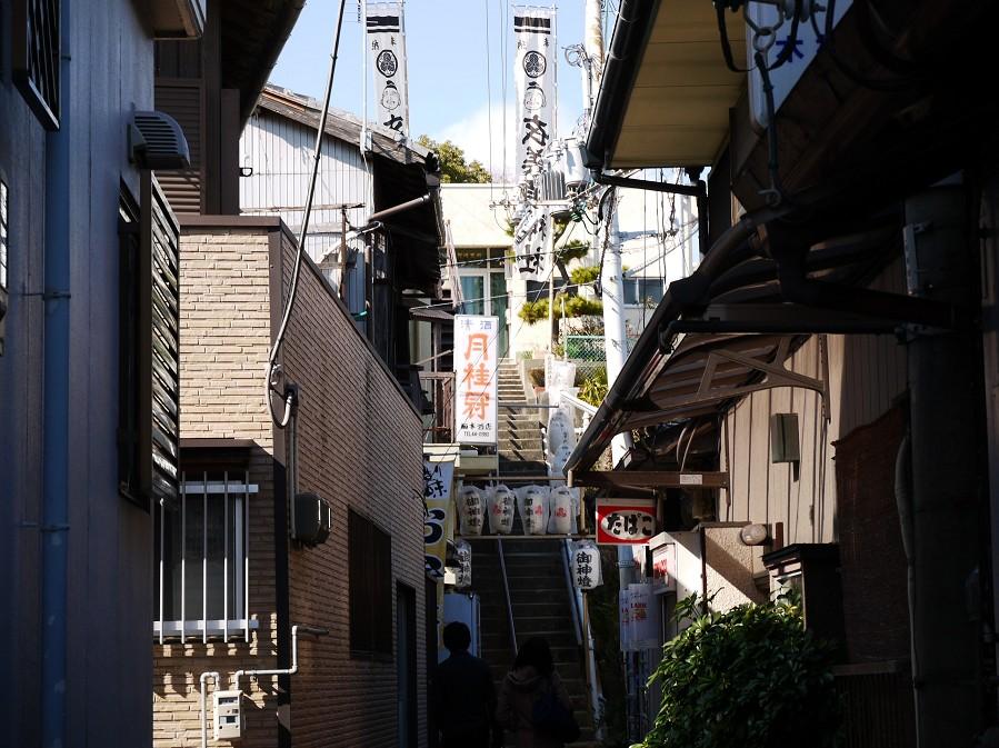 和歌山市雑賀崎の旧正月_b0093754_21412747.jpg