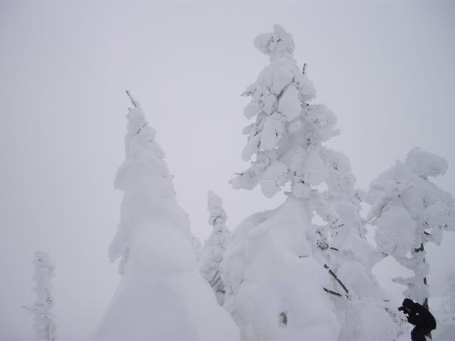 一転、極限の雪の風景_d0116059_224114.jpg