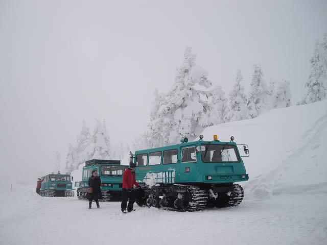 一転、極限の雪の風景_d0116059_2264849.jpg