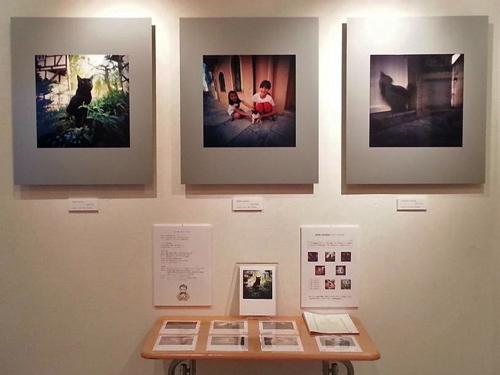 明日から 第4回 猫・ねこ写真展 始まります Art Gallery 山手 横浜 ピンホール写真_f0117059_200719.jpg