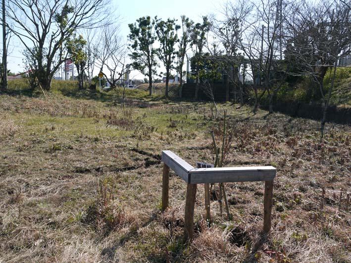 3年連続野口初太郎頌徳碑建立地の河津桜に肥料:2・11 _c0014967_12532553.jpg