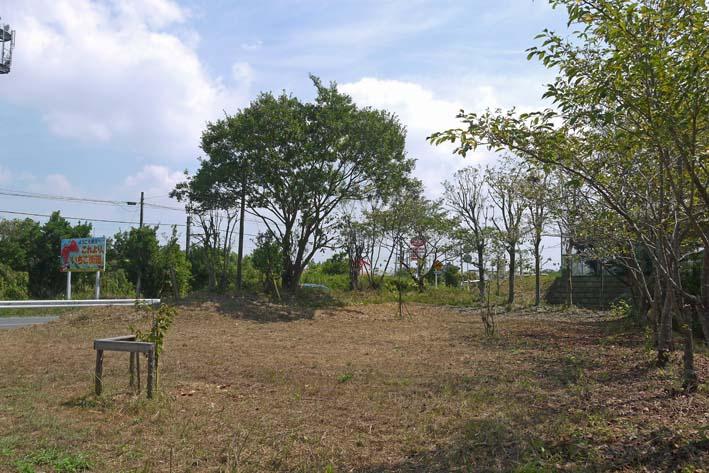 3年連続野口初太郎頌徳碑建立地の河津桜に肥料:2・11 _c0014967_133441.jpg