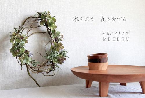 「木を想う 花を愛でる」3/13 - 3/31_e0205196_21544221.jpg