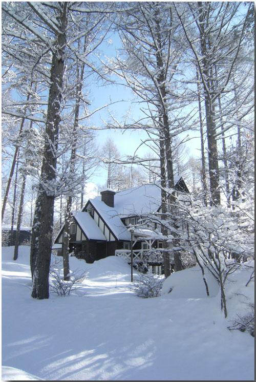 粉雪がスイーツに見える? モフモフに囲まれたシャレーグリンデル_d0109415_115378.jpg