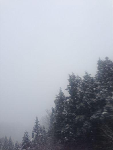 雪_b0099226_849568.jpg