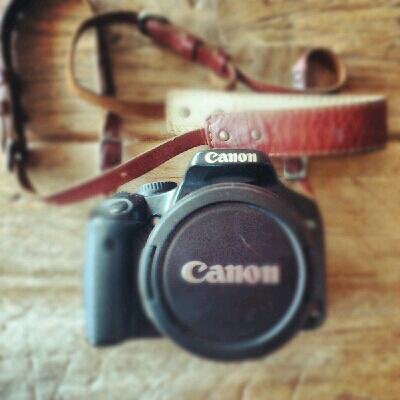 かわいいかわいいカメラちゃん。_c0127029_13553262.jpg