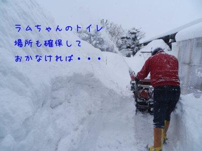 f0205887_11215638.jpg