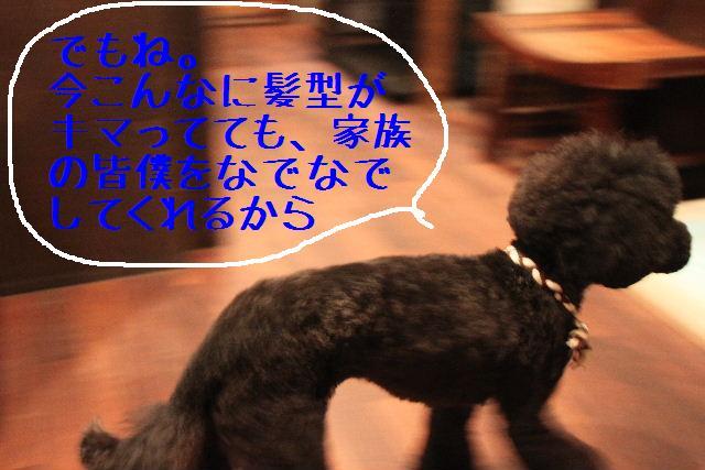 b0130018_105259.jpg