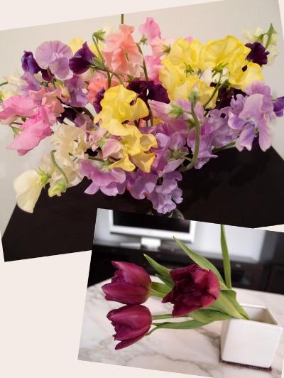 春花♪_a0231828_20143574.jpg