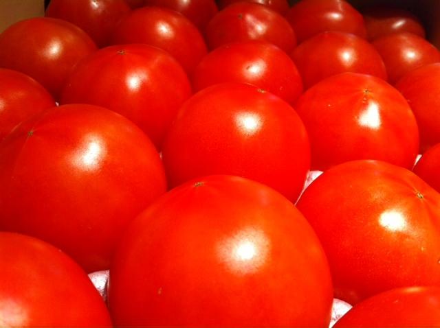 この時期に、こんな美味しいトマトが・・・&2月18日(月)のランチメニュー_d0243849_0351538.jpg