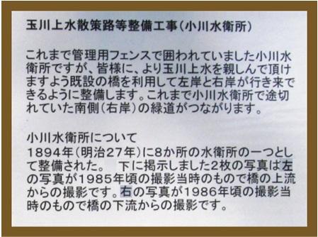 f0137096_19414980.jpg
